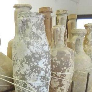 museo-conte-agostino-pepoli-trapani